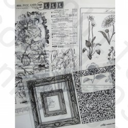 Pack Papel de Seda Herbarium