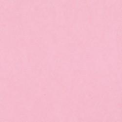 Cartulina Lisa 12x12 Cotton...